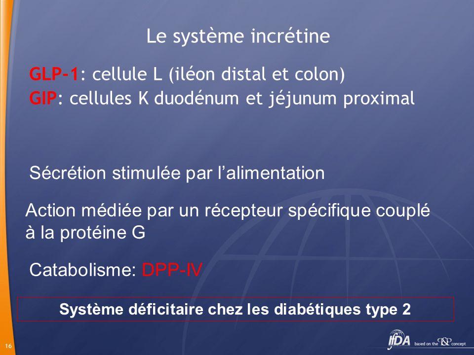 16 Le système incrétine GLP-1: cellule L (iléon distal et colon) GIP: cellules K duodénum et jéjunum proximal Sécrétion stimulée par lalimentation Act