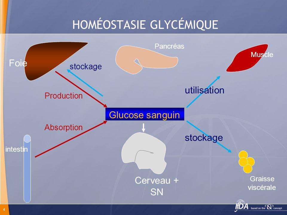 4 HOMÉOSTASIE GLYCÉMIQUE Glucose sanguin Foie intestin Cerveau + SN Graisse viscérale Production Absorption utilisation stockage Pancréas Muscle stock