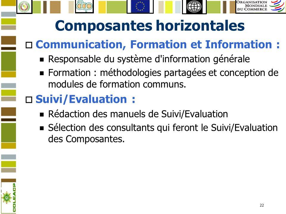 22 Composantes horizontales o Communication, Formation et Information : n Responsable du système d'information générale n Formation : méthodologies pa