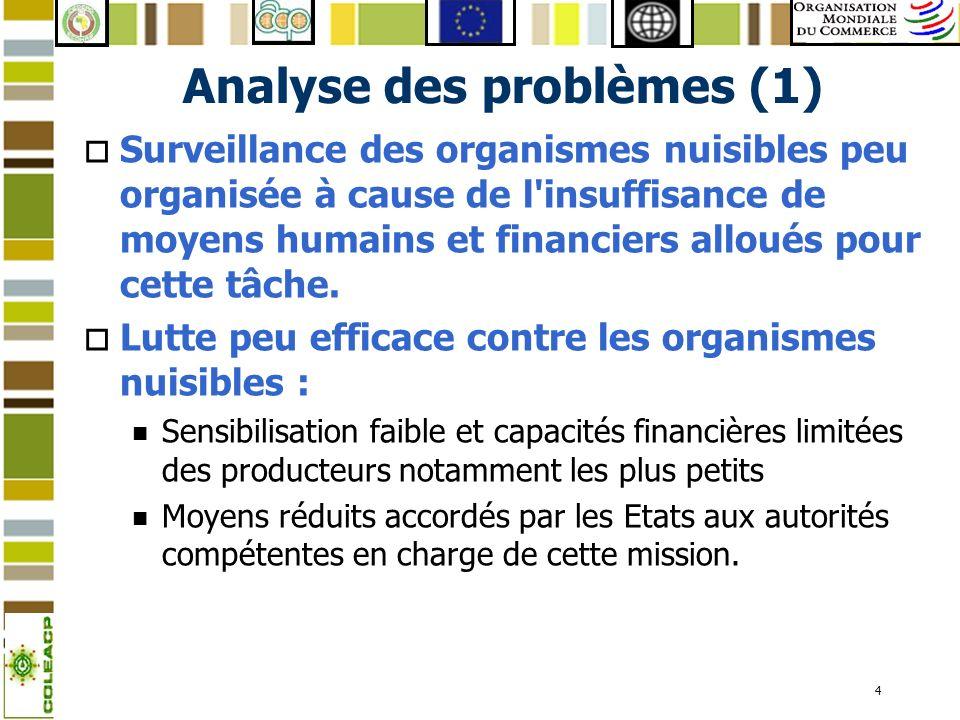 4 Analyse des problèmes (1) o Surveillance des organismes nuisibles peu organisée à cause de l'insuffisance de moyens humains et financiers alloués po