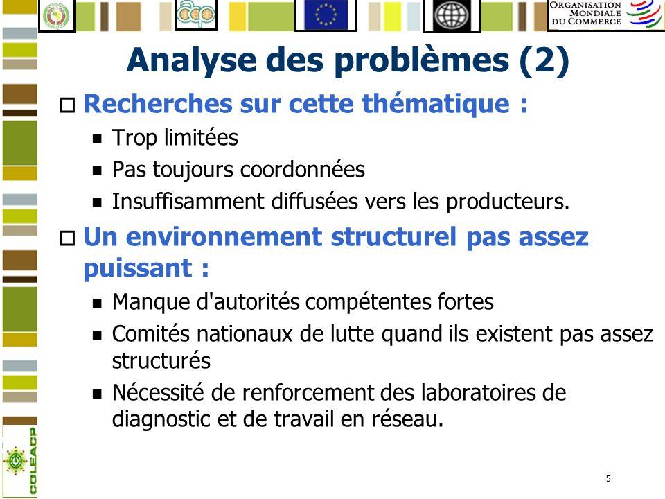 5 Analyse des problèmes (2) o Recherches sur cette thématique : n Trop limitées n Pas toujours coordonnées n Insuffisamment diffusées vers les product
