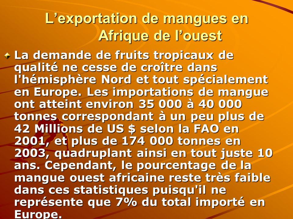 Lexportation de mangues en Afrique de louest La demande de fruits tropicaux de qualité ne cesse de croître dans l'hémisphère Nord et tout spécialement
