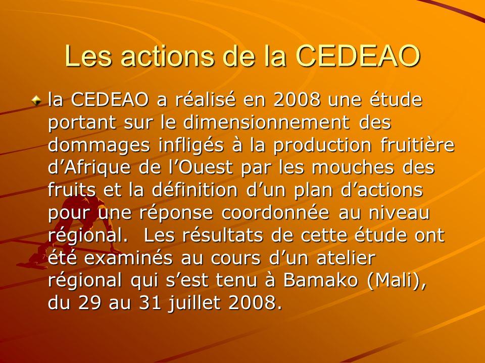 Les actions de la CEDEAO la CEDEAO a réalisé en 2008 une étude portant sur le dimensionnement des dommages infligés à la production fruitière dAfrique