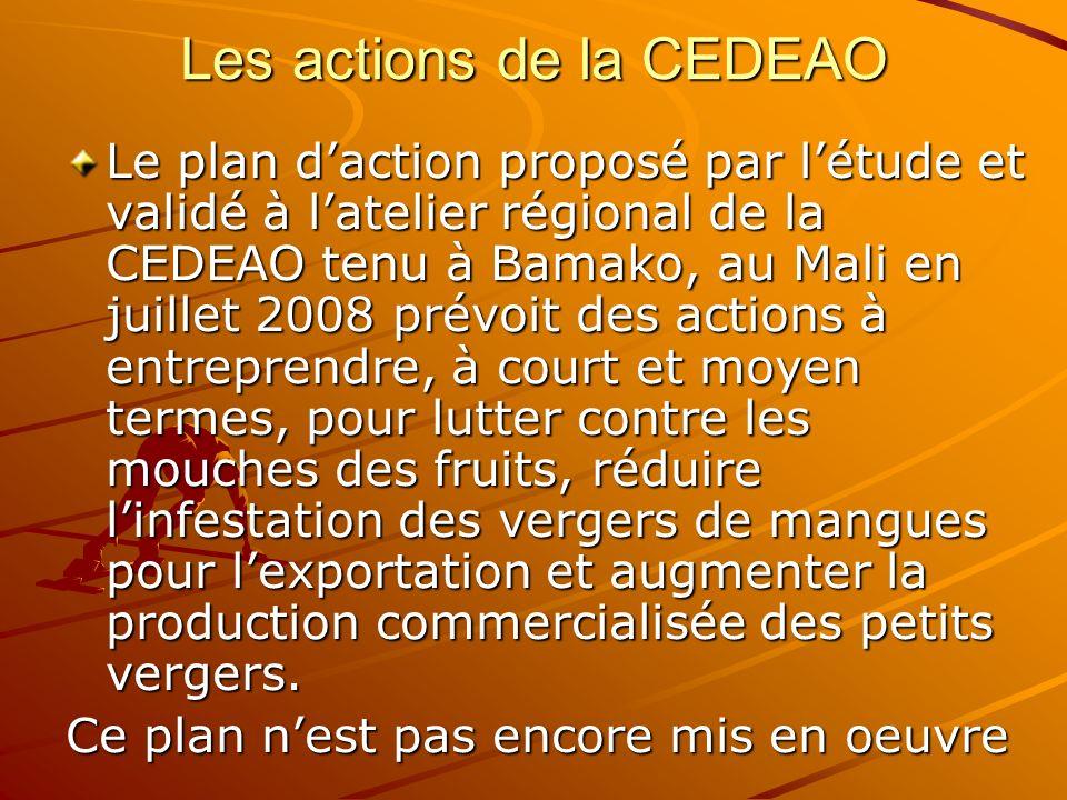 Les actions de la CEDEAO Le plan daction proposé par létude et validé à latelier régional de la CEDEAO tenu à Bamako, au Mali en juillet 2008 prévoit