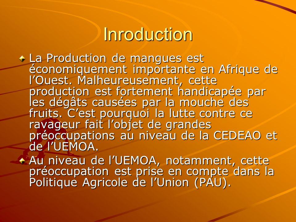 Inroduction La Production de mangues est économiquement importante en Afrique de lOuest. Malheureusement, cette production est fortement handicapée pa