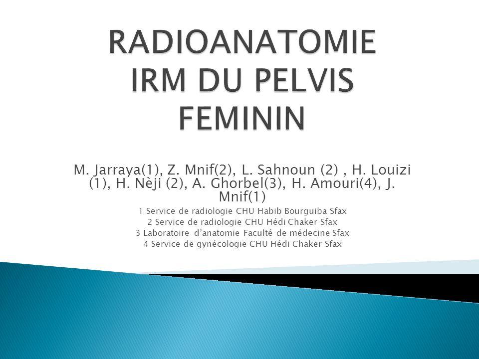 Le pelvis féminin réalise une excavation contenant les viscères pelviens organisés en trois loges vésicale, génitale et rectale et des structures vasculo-nerveuses et lymphatiques.