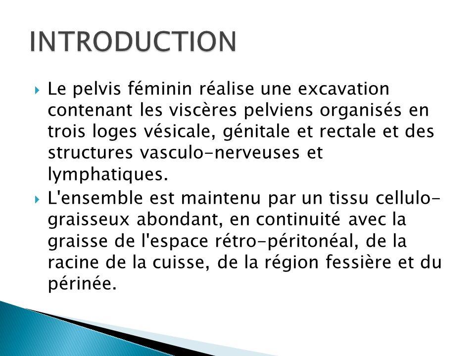 Ce poster a été élaboré dans un but didactique afin de réviser l anatomie IRM du pelvis féminin pour mieux comprendre la pathologie.