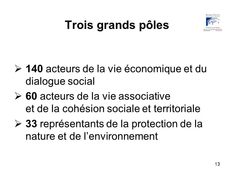 13 Trois grands pôles 140 acteurs de la vie économique et du dialogue social 60 acteurs de la vie associative et de la cohésion sociale et territorial