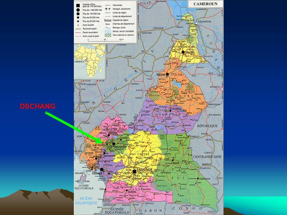 Dschang : une merveille au plein cœur de lOuest Cameroun Dschang qui veut dire en langue locale « palabre) est la 1 ère Capitale de la région Bamiléké (grand Ouest du Cameroun) jusquen 1963; Situé à 300 km de la côte atlantique (Douala, capitale économique) et 400 km de la capitale politique du Cameroun (Yaoundé), Dschang est actuellement le Chef lieu du département de la Menoua dans la province de lOuest qui en compte 8; Ville de montagne (2740 m daltitude) et au micro – climat agréable (20°C), Dschang a été adoptée depuis 1935 par les européens qui y avaient bâtie un village touristique (Centre Climatique) qui fait aujourdhui la fierté de la ville;