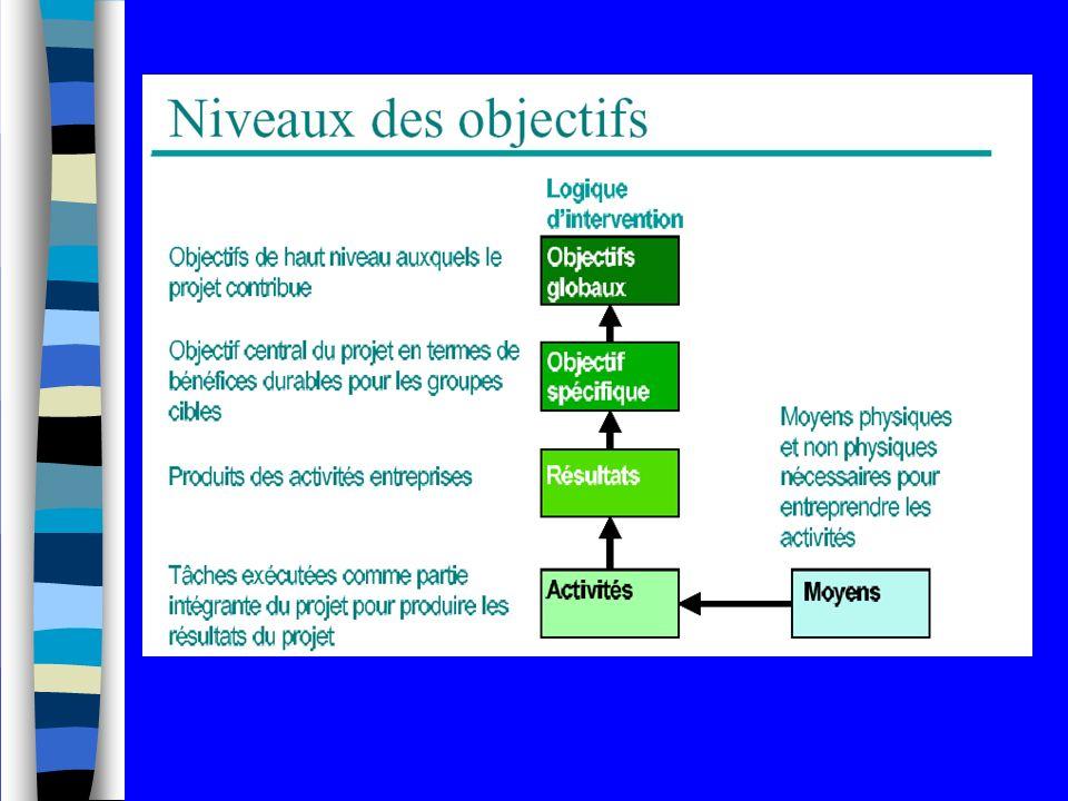 Niveaux des objectifs Niveau 3: Résultats Les résultats décrivent les « services » (infrastructures construites, formations dispensées…) à fournir aux