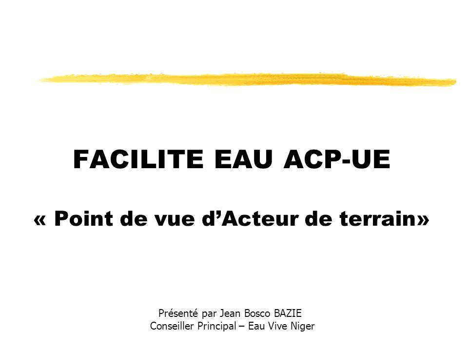 FACILITE EAU ACP-UE « Point de vue dActeur de terrain» Présenté par Jean Bosco BAZIE Conseiller Principal – Eau Vive Niger