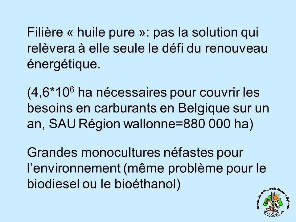 Filière « huile pure »: pas la solution qui relèvera à elle seule le défi du renouveau énergétique. (4,6*10 6 ha nécessaires pour couvrir les besoins