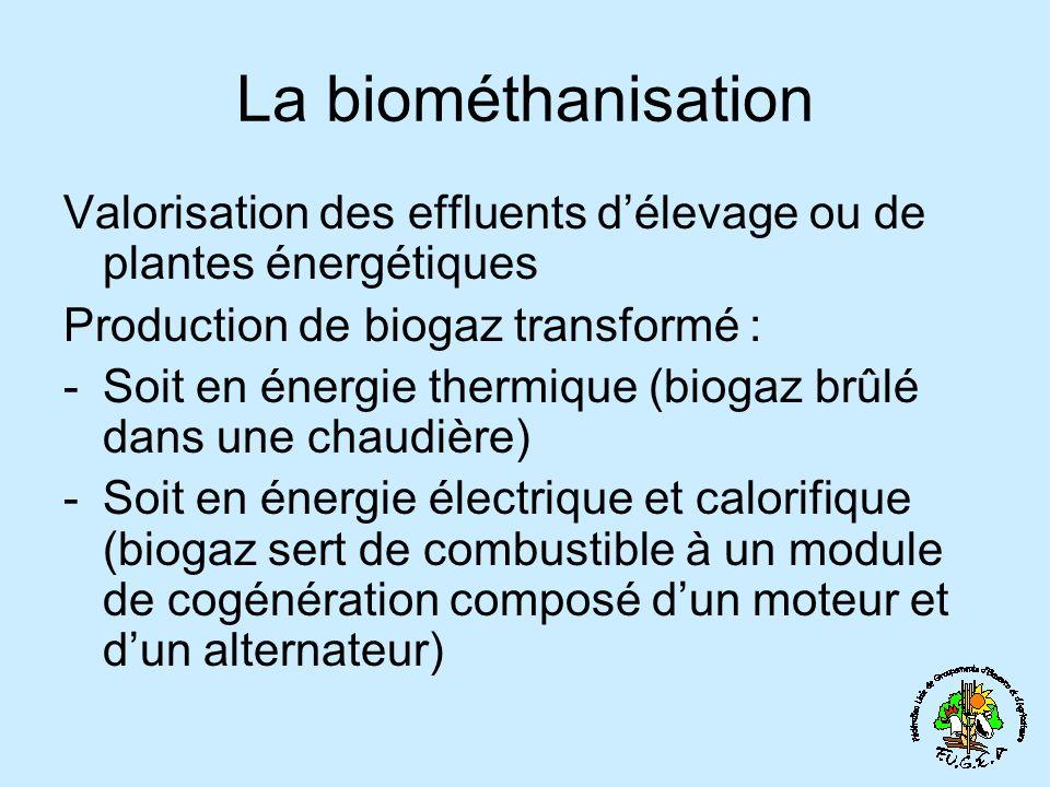 La biométhanisation Valorisation des effluents délevage ou de plantes énergétiques Production de biogaz transformé : -Soit en énergie thermique (biogaz brûlé dans une chaudière) -Soit en énergie électrique et calorifique (biogaz sert de combustible à un module de cogénération composé dun moteur et dun alternateur)