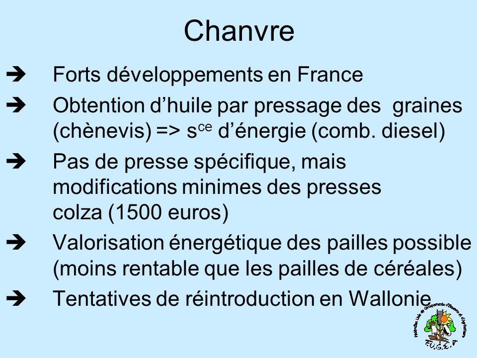 Chanvre Forts développements en France Obtention dhuile par pressage des graines (chènevis) => s ce dénergie (comb. diesel) Pas de presse spécifique,
