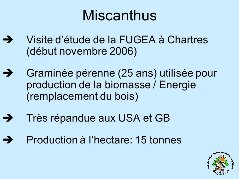 Miscanthus Visite détude de la FUGEA à Chartres (début novembre 2006) Graminée pérenne (25 ans) utilisée pour production de la biomasse / Energie (remplacement du bois) Très répandue aux USA et GB Production à lhectare: 15 tonnes