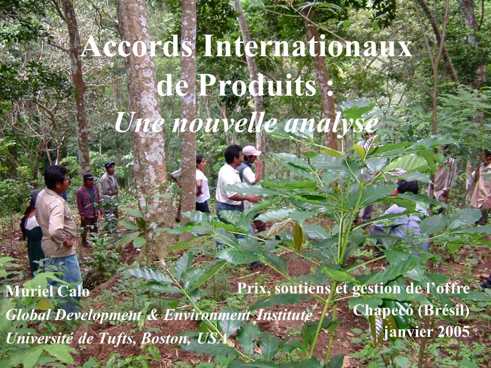 Accords Internationaux de Produits : Une nouvelle analyse Muriel Calo Global Development & Environment Institute Université de Tufts, Boston, USA Prix, soutiens et gestion de loffre Chapecó (Brésil) janvier 2005