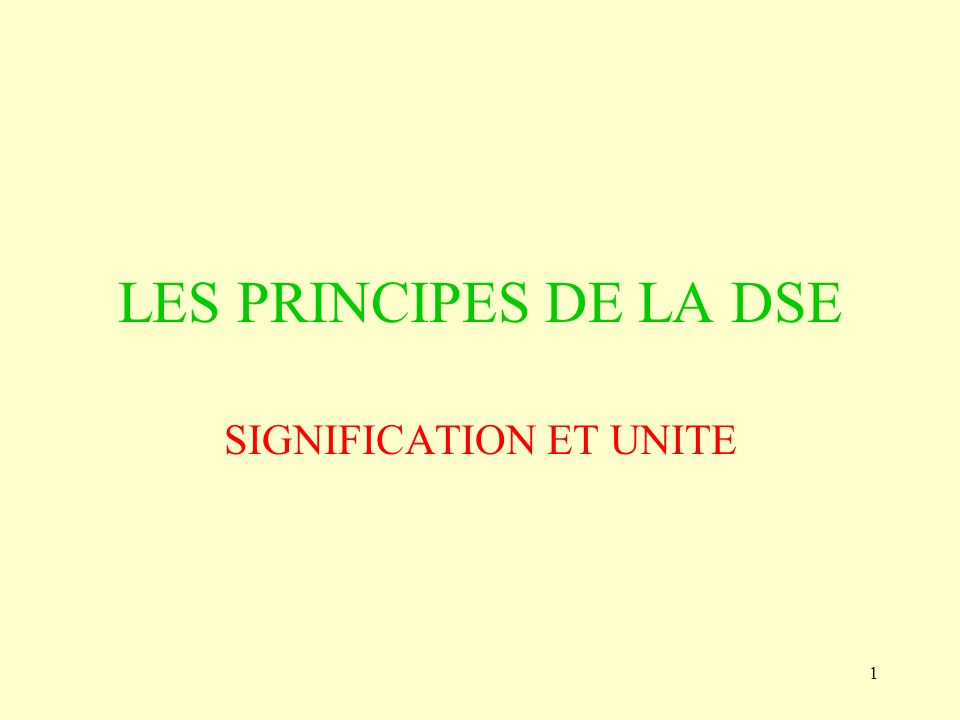 1 LES PRINCIPES DE LA DSE SIGNIFICATION ET UNITE