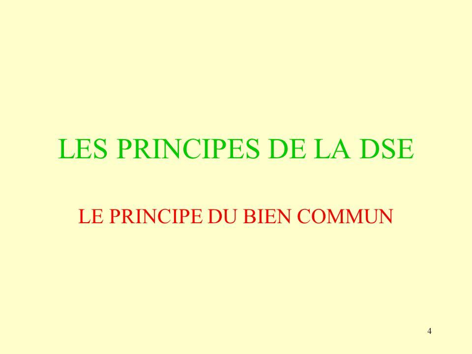 4 LES PRINCIPES DE LA DSE LE PRINCIPE DU BIEN COMMUN