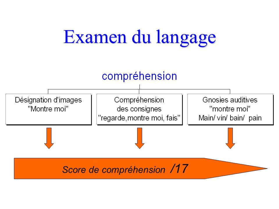 Examen du langage Niveau informatif Niveau syntaxique -déterminants -verbes conjugués -structure des phrases Niveau informatif Niveau syntaxique -déte