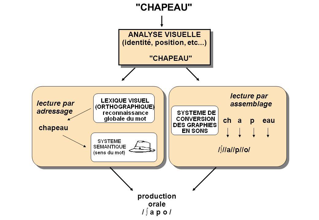 ANALYSE VISUELLE (identité, position, etc...) CHAPEAU ANALYSE VISUELLE (identité, position, etc...) CHAPEAU lecture par adressage chapeau lecture par assemblage ch a p eau ///a//p//o/ production orale / a p o /