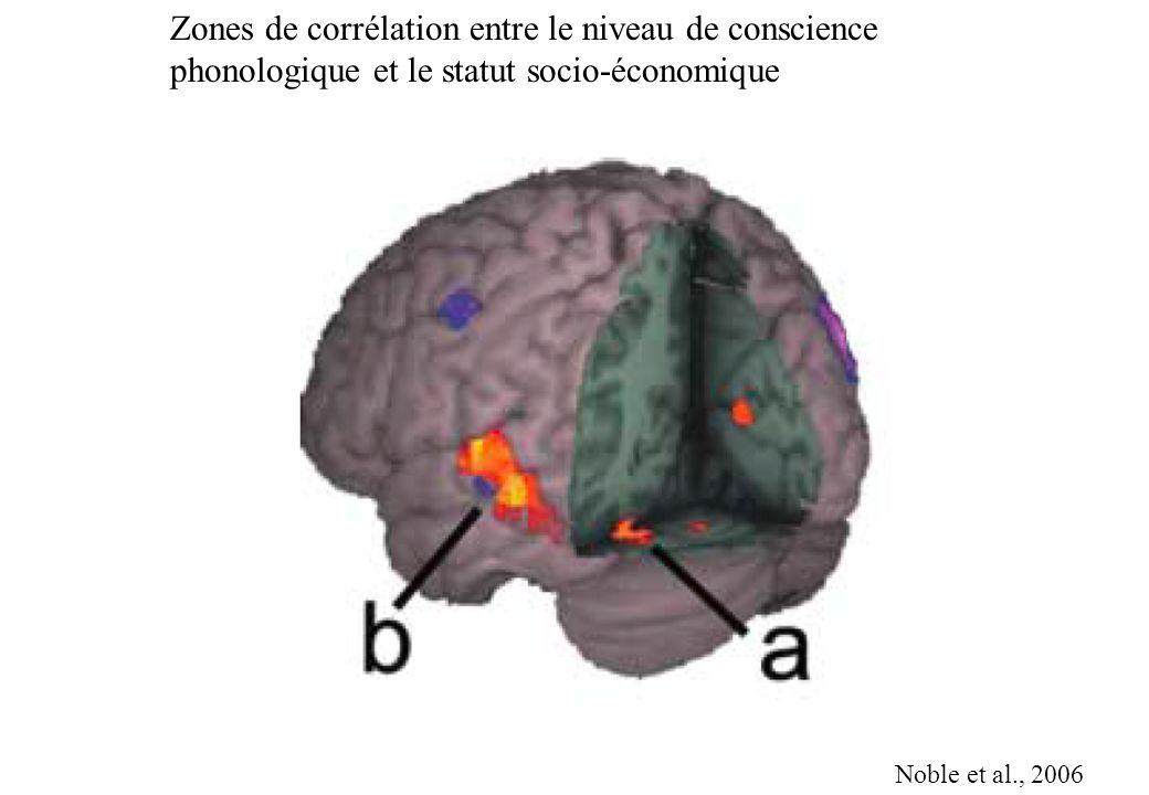 Zones de corrélation entre le niveau de conscience phonologique et le statut socio-économique Noble et al., 2006