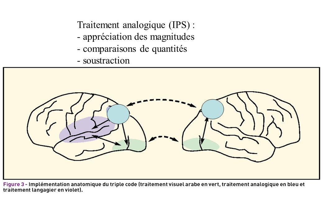 Traitement analogique (IPS) : - appréciation des magnitudes - comparaisons de quantités - soustraction