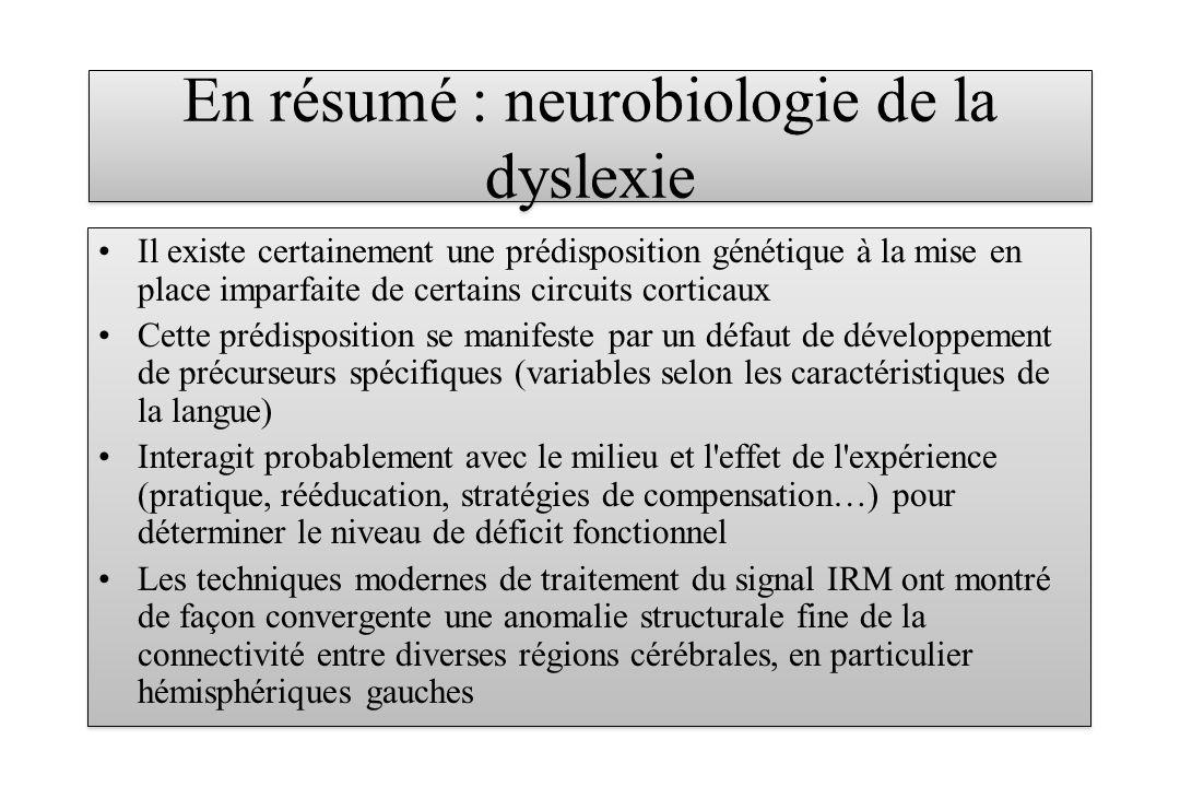 En résumé : neurobiologie de la dyslexie Il existe certainement une prédisposition génétique à la mise en place imparfaite de certains circuits cortic