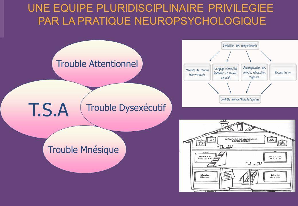 Trouble Attentionnel T.S.A Trouble Mnésique Trouble Dysexécutif UNE EQUIPE PLURIDISCIPLINAIRE PRIVILEGIEE PAR LA PRATIQUE NEUROPSYCHOLOGIQUE