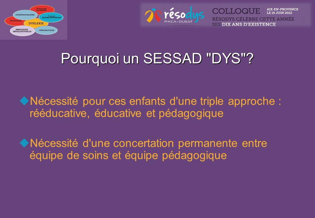 Création du SESSAD Résodys Agrément de la DDASS en août 2008 40 places validées en CROSMS sur les B.