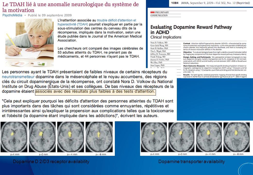 Méta-analyse de 7 études de la substance grise (143 témoins vs 114 patients TDAH) : seule significativité = putamen/pallidum droit