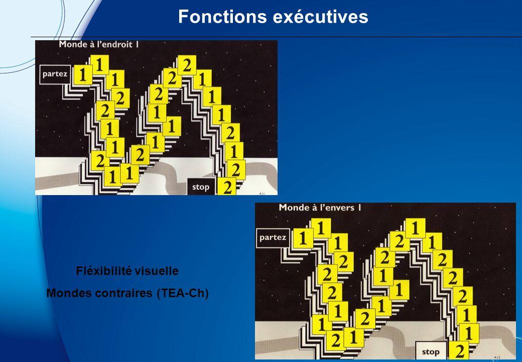 Fonctions exécutives Tâche de flexibilité visuelle : Les petits hommes verts (TEA-Ch) Difficultés de contrôle de linhibition verbaleNS = 6