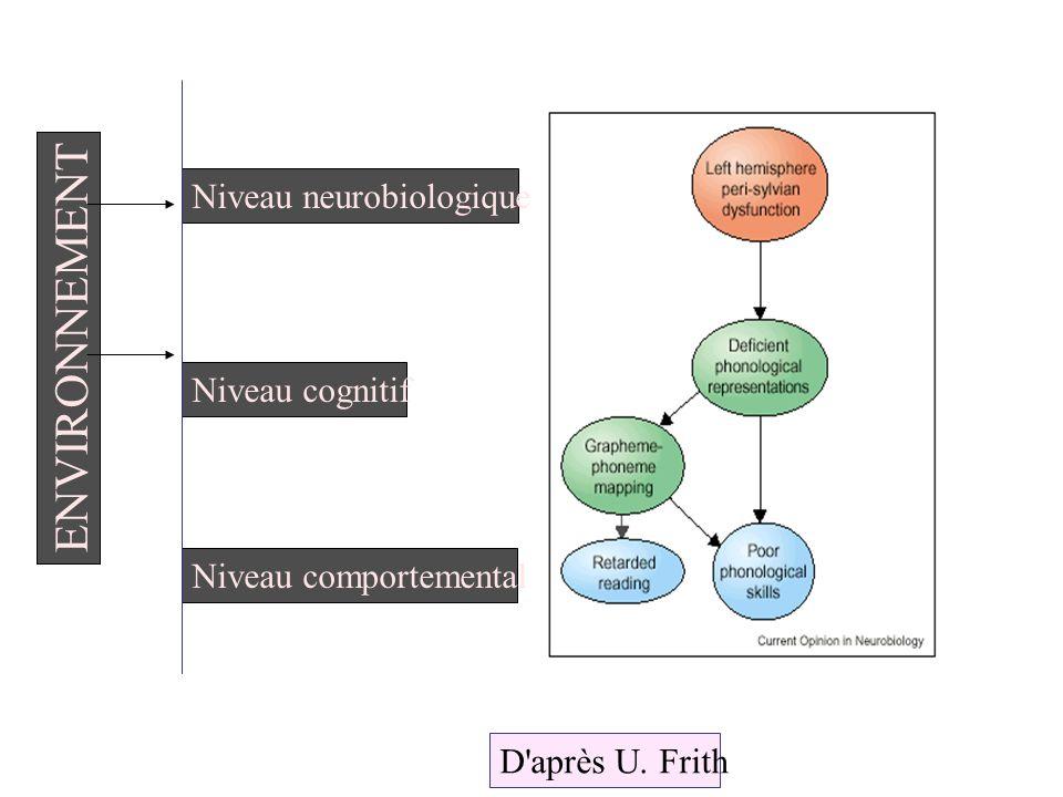 Niveau neurobiologique Niveau cognitif Niveau comportemental ENVIRONNEMENT D'après U. Frith