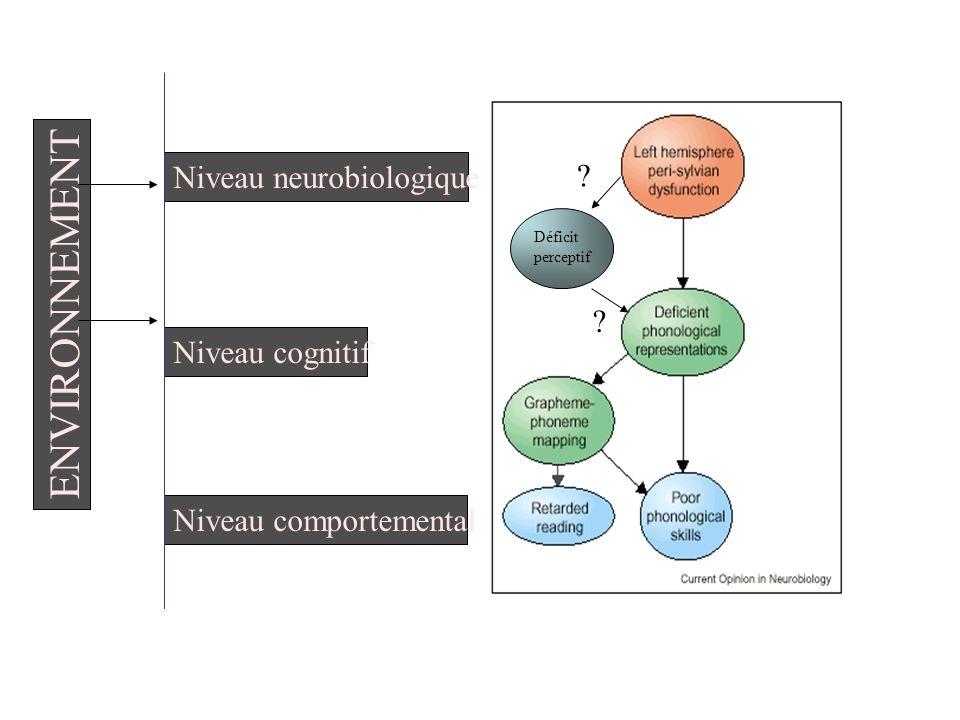 Niveau neurobiologique Niveau cognitif Niveau comportemental ENVIRONNEMENT Déficit perceptif ? ?