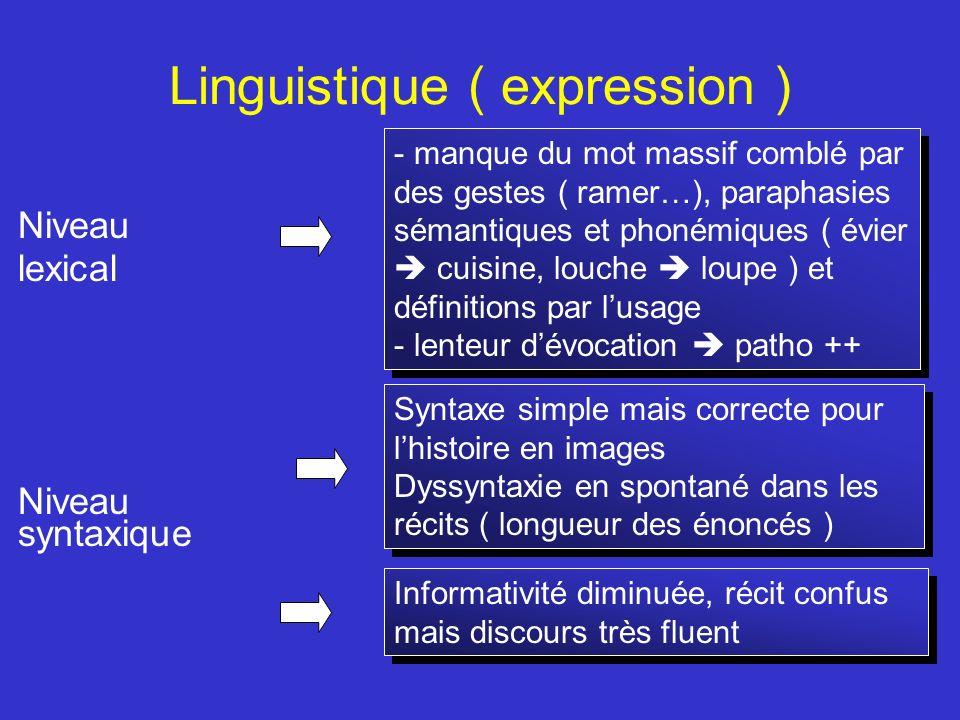 Linguistique ( expression ) Niveau lexical Niveau syntaxique - manque du mot massif comblé par des gestes ( ramer…), paraphasies sémantiques et phoném