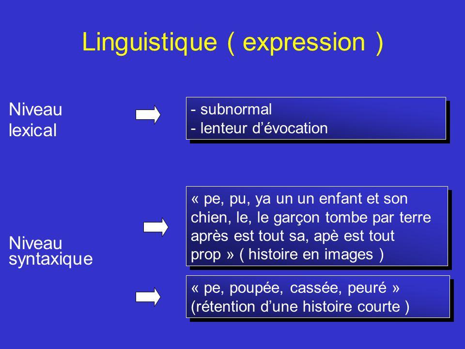 Linguistique ( expression ) Niveau lexical Niveau syntaxique - subnormal - lenteur dévocation - subnormal - lenteur dévocation « pe, pu, ya un un enfa