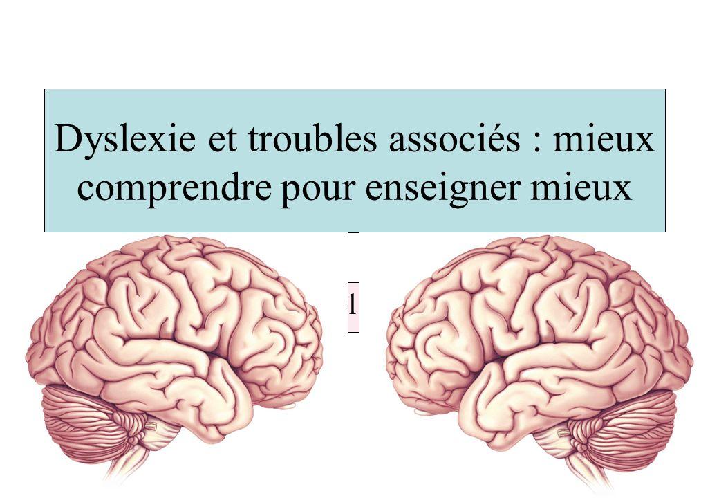 Trois principaux messages Le cerveau du dyslexique souffre d une dysfonction des aires corticales du langage L environnement joue un rôle majeur sur les anomalies constatées La dyslexie et les autres troubles d apprentissage entretiennent des relations étroites mais complexes Nécessité d une approche pluri-disciplinaire : exemple d un réseau de santé