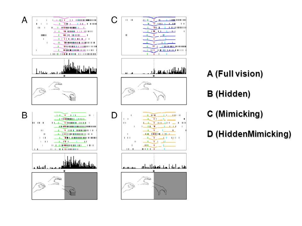Umiltà et al. Neuron 2001 A (Full vision) B (Hidden) C (Mimicking) D (HiddenMimicking)