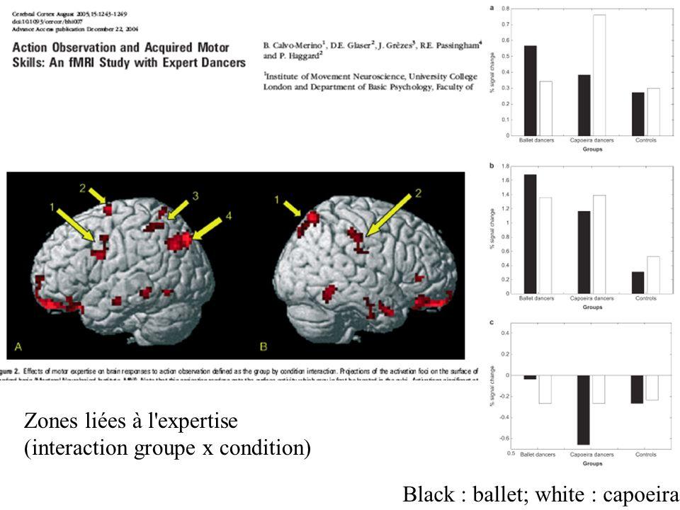 Black : ballet; white : capoeira Zones liées à l'expertise (interaction groupe x condition)