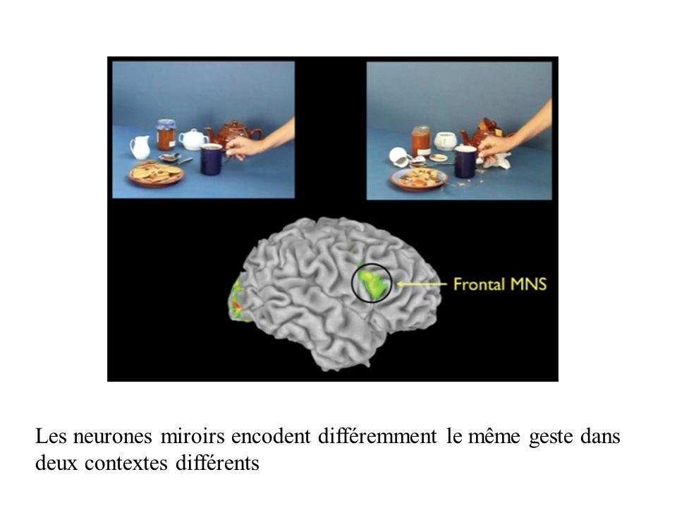 Les neurones miroirs encodent différemment le même geste dans deux contextes différents