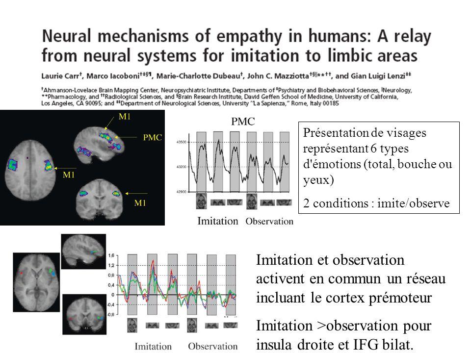 Imitation et observation activent en commun un réseau incluant le cortex prémoteur Imitation >observation pour insula droite et IFG bilat. Présentatio