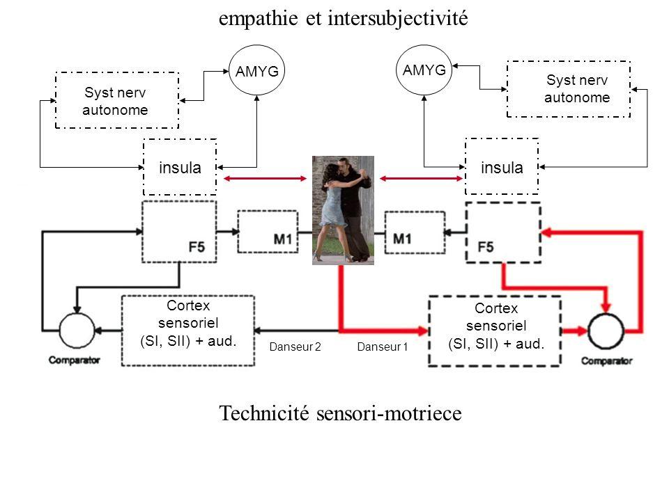 Cortex sensoriel (SI, SII) + aud. Cortex sensoriel (SI, SII) + aud. Danseur 1 Danseur 2 insula Syst nerv autonome AMYG insula Syst nerv autonome AMYG