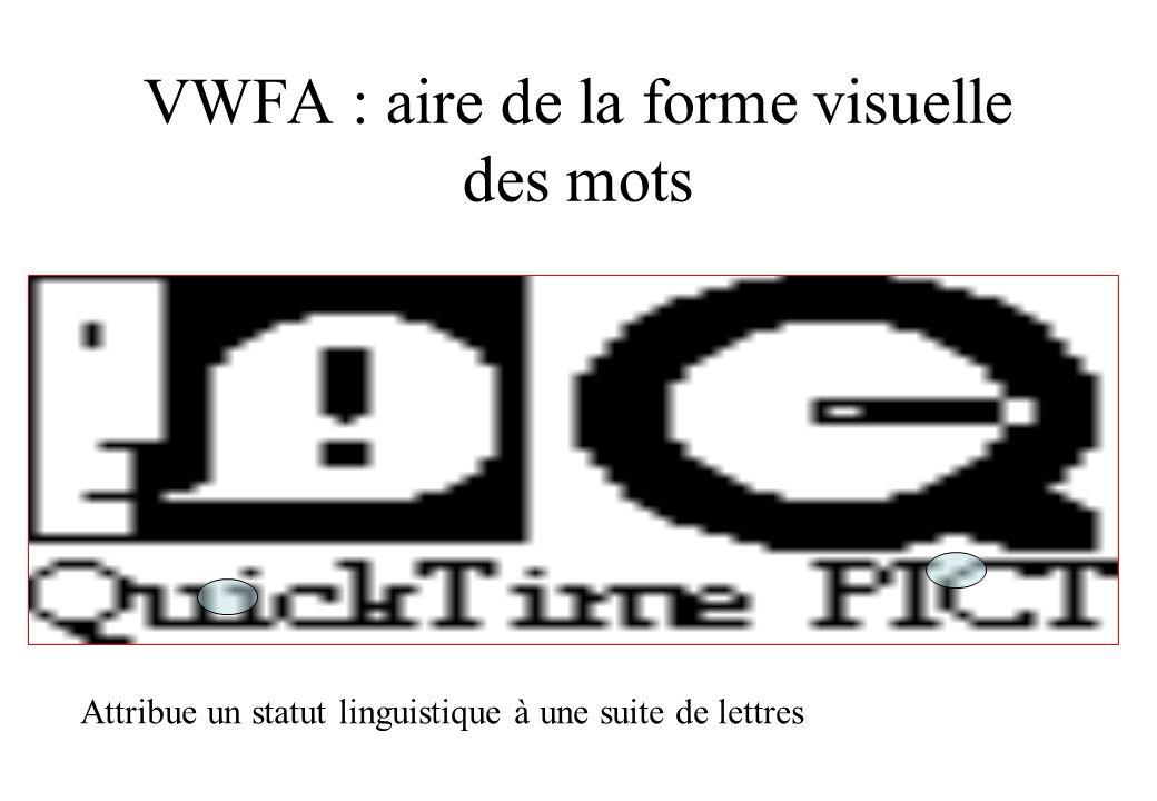 VWFA : aire de la forme visuelle des mots Attribue un statut linguistique à une suite de lettres