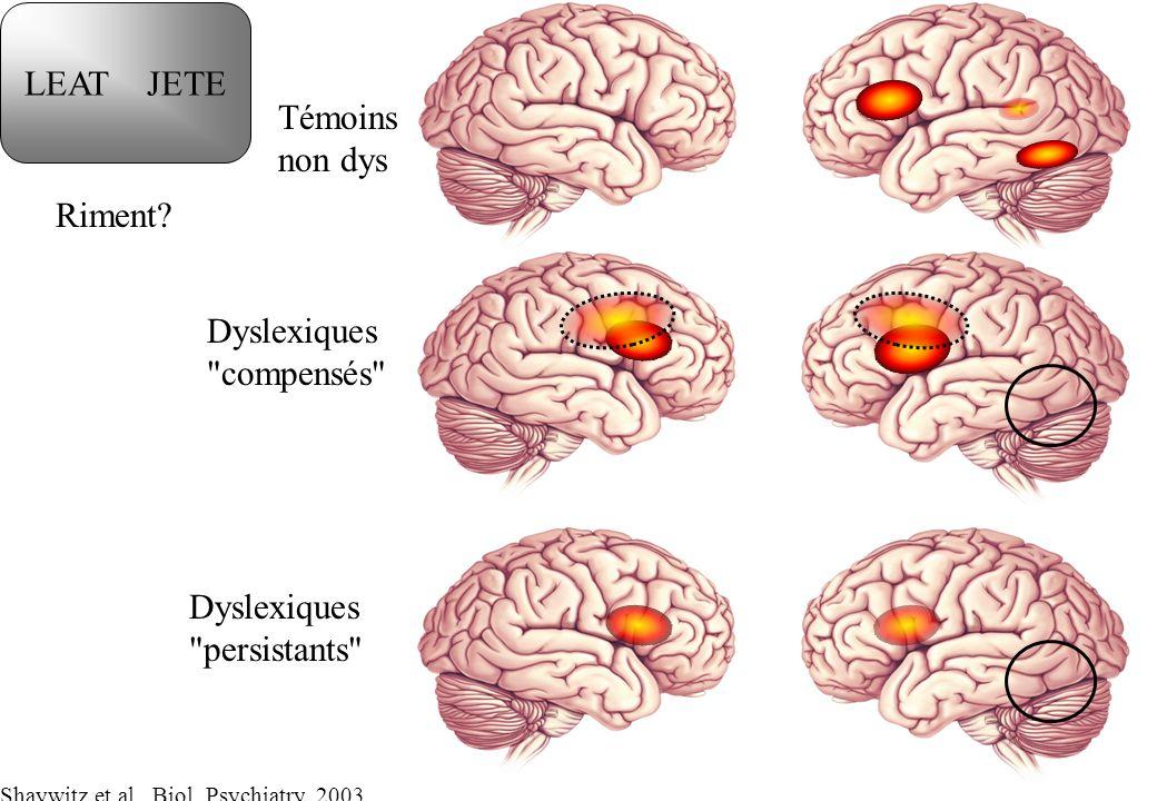 Témoins non dys Dyslexiques
