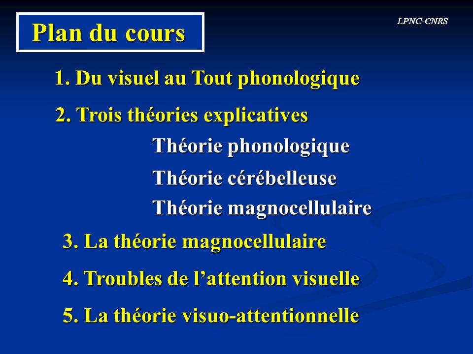 LPNC-CNRS Plan du cours 1. Du visuel au Tout phonologique 2. Trois théories explicatives Théorie phonologique Théorie magnocellulaire LPNC-CNRS Théori