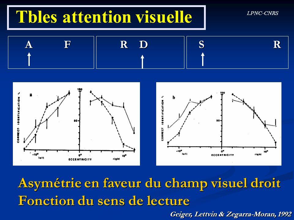 LPNC-CNRS Tbles attention visuelle A F R D S R Asymétrie en faveur du champ visuel droit Fonction du sens de lecture Geiger, Lettvin & Zegarra-Moran,