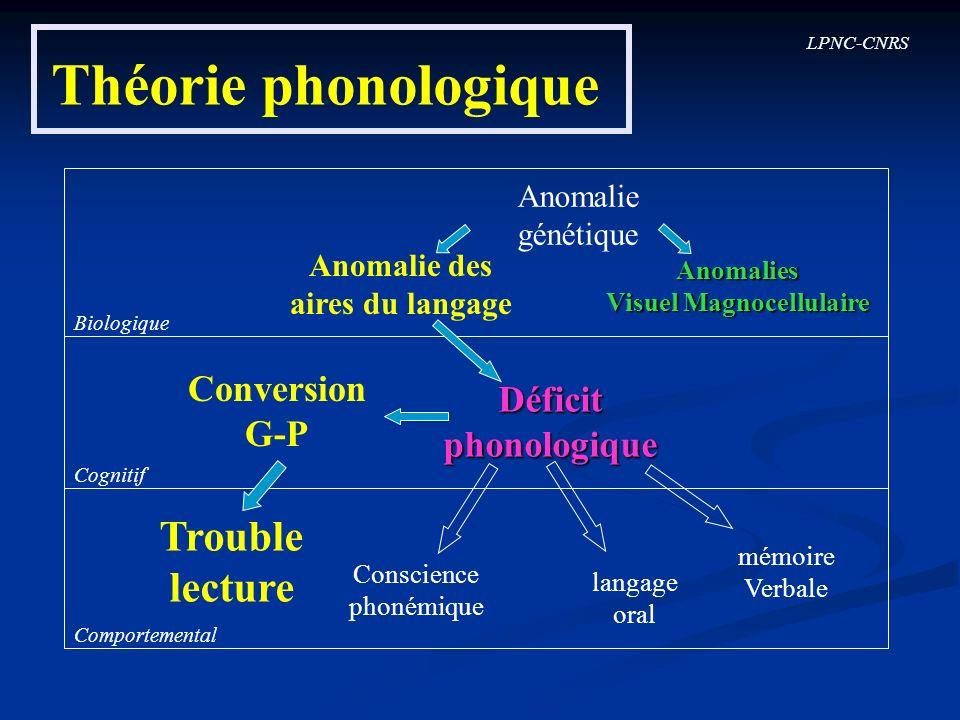 LPNC-CNRS Théorie phonologique Biologique Cognitif Comportemental Conversion G-P Déficitphonologique Trouble lecture Conscience phonémique langage ora
