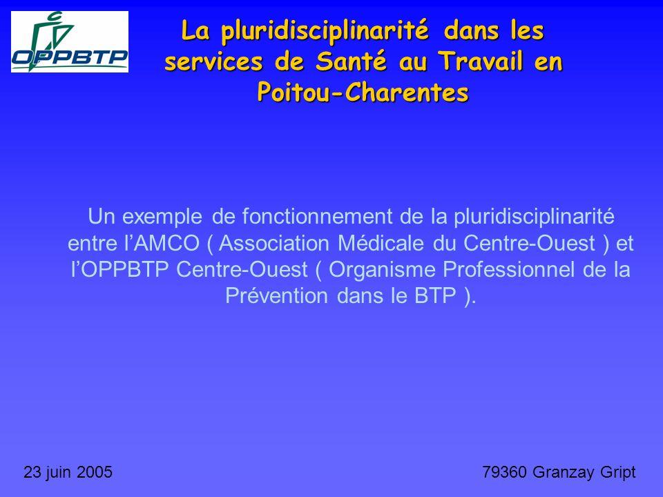 La pluridisciplinarité dans les services de Santé au Travail en Poitou-Charentes 23 juin 200579360 Granzay Gript Un exemple de fonctionnement de la pl