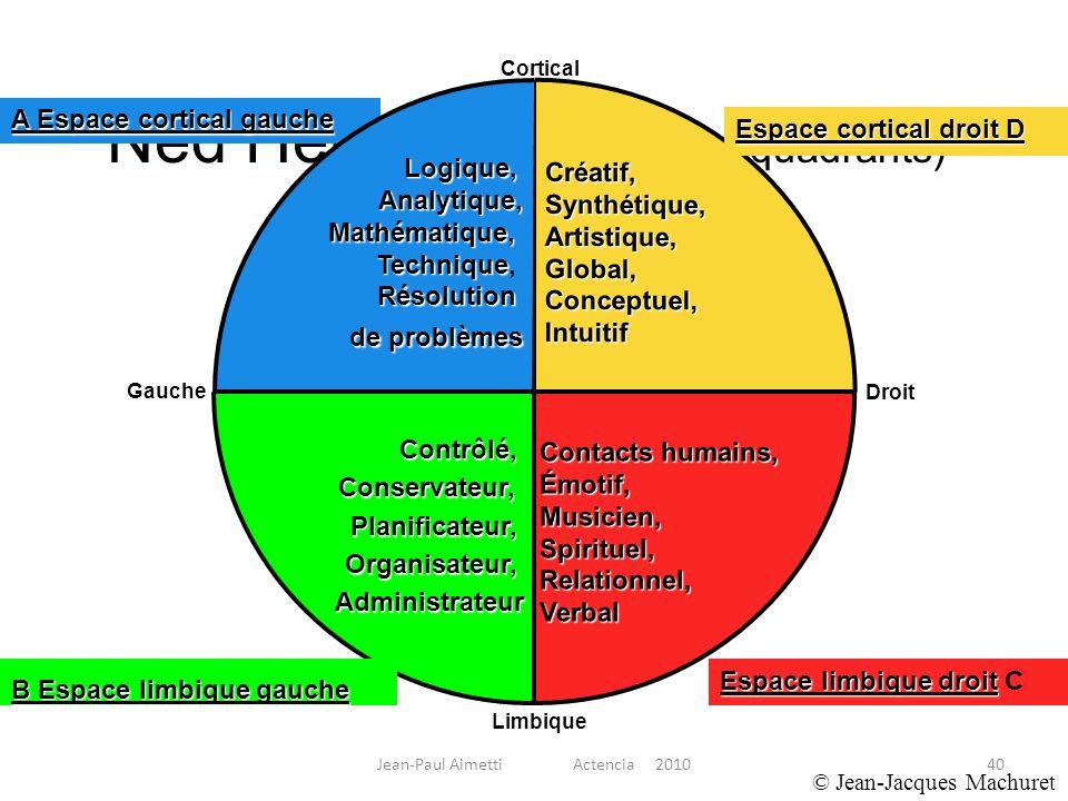 40 Ned Herrmann (modèle 4 quadrants) Contrôlé,Conservateur,Planificateur,Organisateur,Administrateur Créatif,Synthétique,Artistique,Global,Conceptuel,