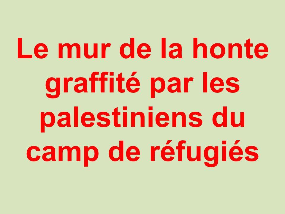 Le mur de la honte graffité par les palestiniens du camp de réfugiés