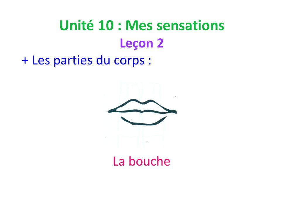 Unité 10 : Mes sensations Leçon 2 + Les parties du corps : La bouche